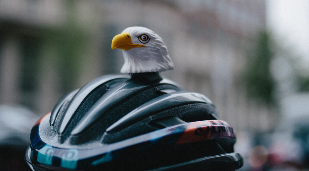 Eagle head on a bicycling helmet