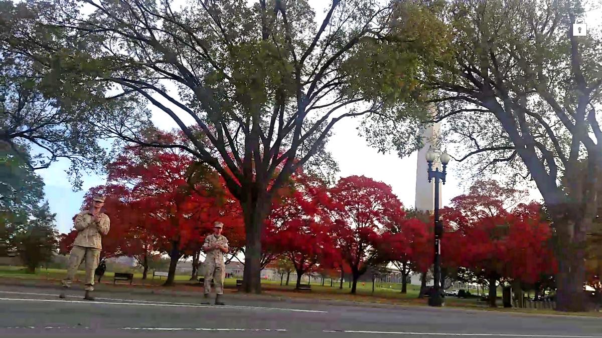 Brilliant fall foliage and the Washington Memorial